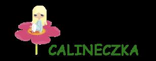 Przedszkole i żłobek Calineczka